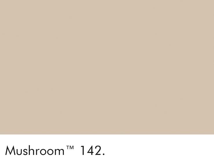 142-mushroom-swatch-lr