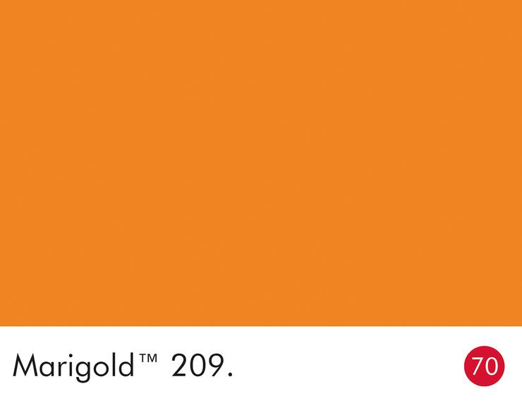 209-marigold-swatch-lr