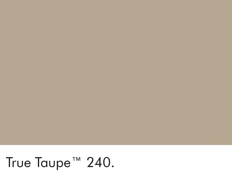 240-true-taupe-swatch-lr