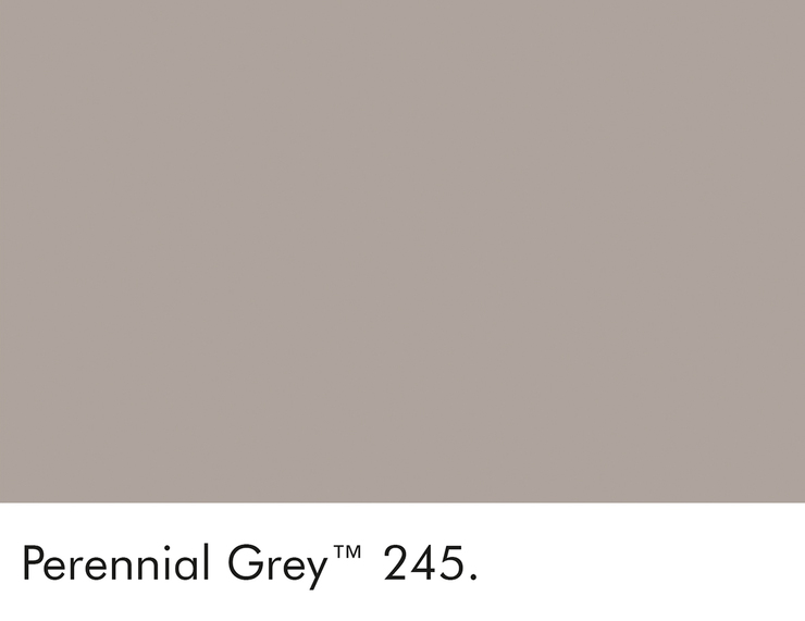 245-perennial-grey-swatch-lr