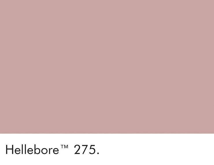 275-hellebore-swatch-lr