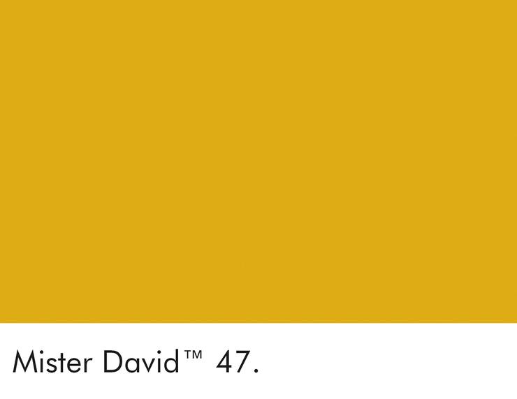 47-mister-david-swatch-lr