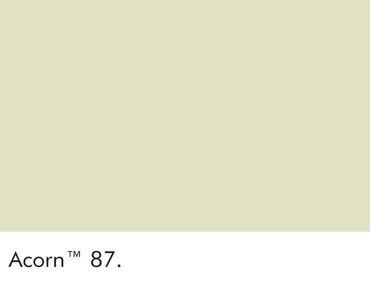 87-acorn-swatch-lr