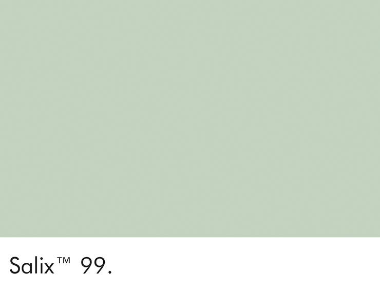 99-salix-swatch-lr