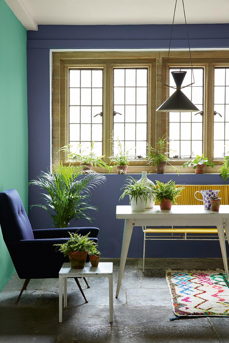 green-verditer-garden-portrait